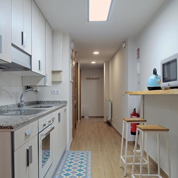 Apartamento Estella-Lizarra I general cocina y vestibulo