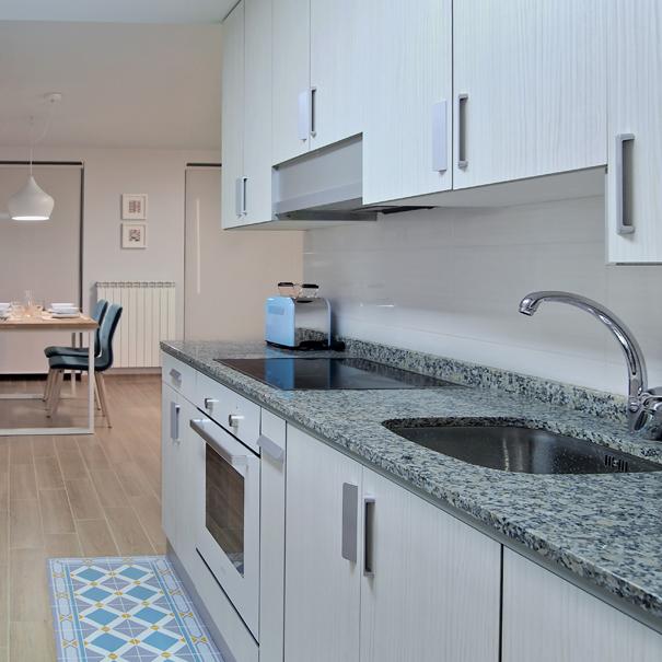 Apartamento Estella-Lizarra I general cocina