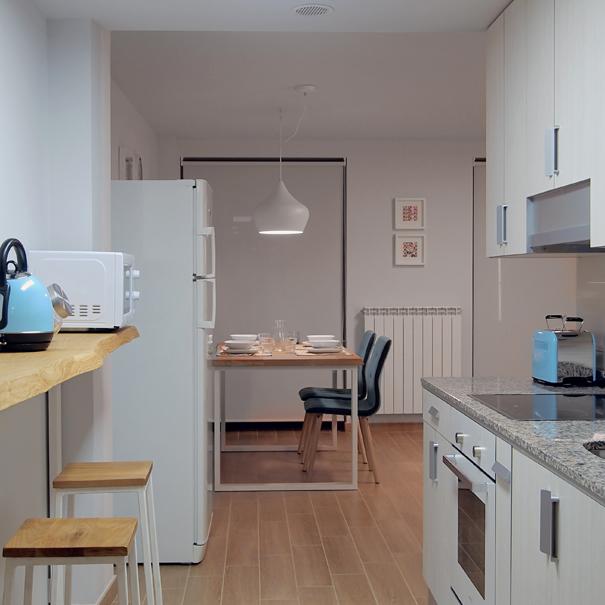 Apartamento Estella-Lizarra I general cocina comedor
